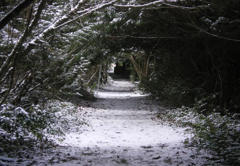 Avenue_Hilliers_winter.jpg
