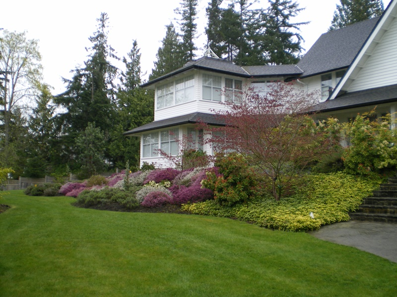 A front yard in Qualicum Beach