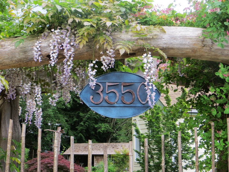 Address covered in wisteria