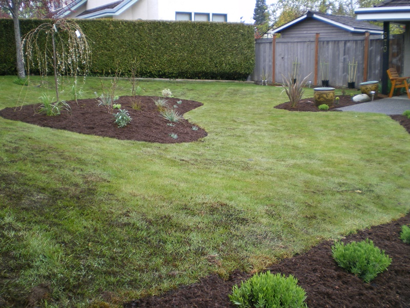 heartshape garden by The Landscape Consultants